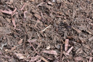 medium hoop mulch