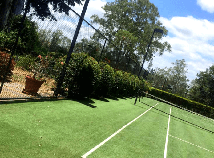 Ball hedge on a tennis court
