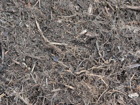 Cheap-mulch-for-your-landscape