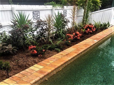 Mulching-your-landscape-will-give-it-a-cleaner-maintained-look